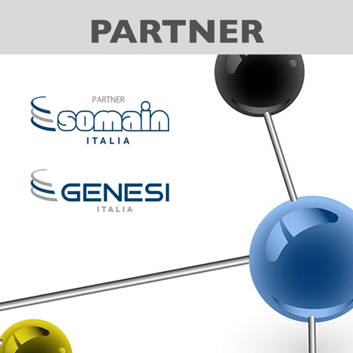 Sistemi Anticaduta è partner di Somain Italia